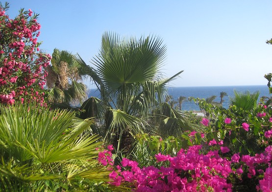Утро на Крите