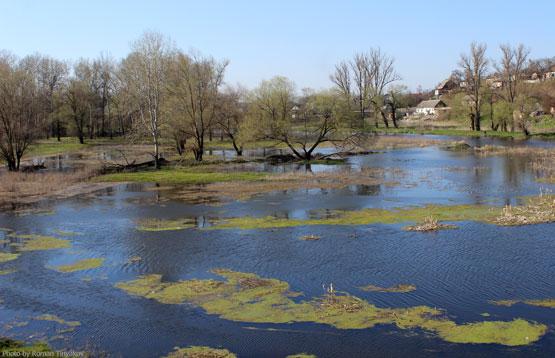 Река из Северского княжества