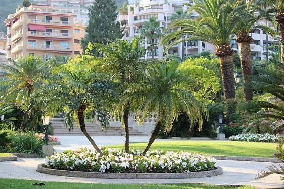 Центр Монте-Карло в зелени