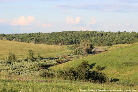 Первомайский район в зелени