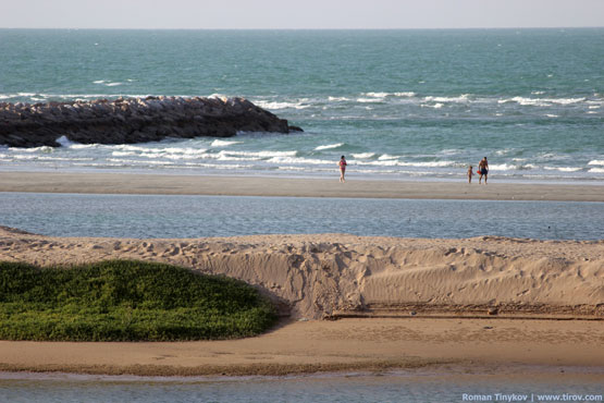 Прогулка по пляжу Персидского залива