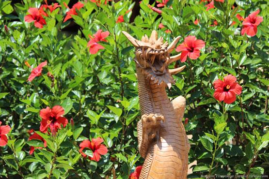 Китайская роза и дракон