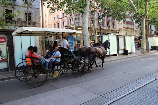 На карете в Испании