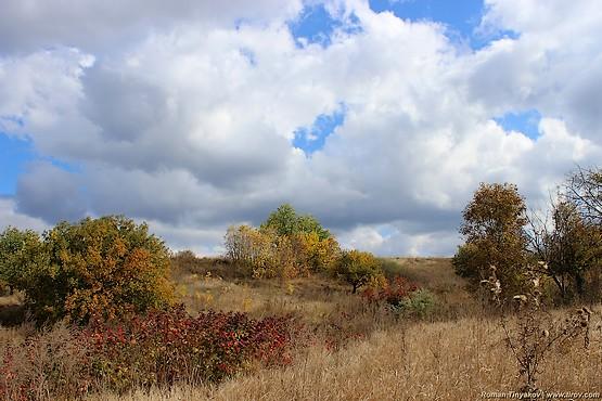 Осенний пейзаж из балки