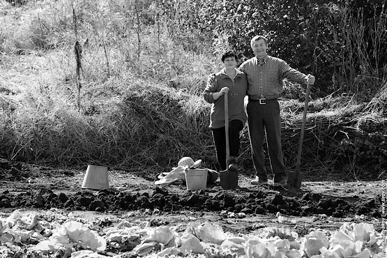 Отец и мать на огороде