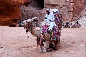 Верхом на верблюде
