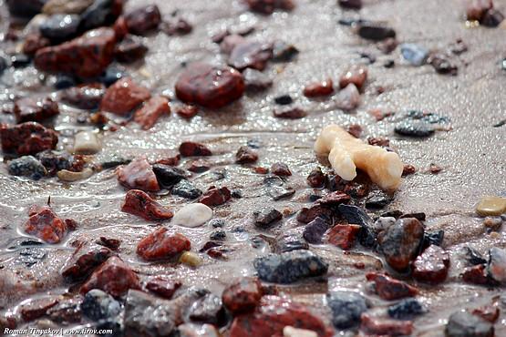 Красные камни на берегу Красного моря
