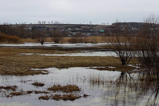 Талая вода на лугу в Алексеевке