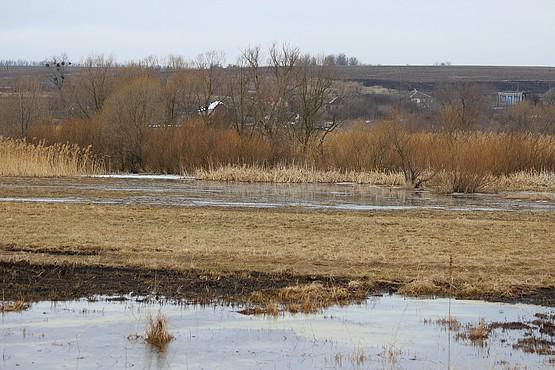 Разлив реки в селе