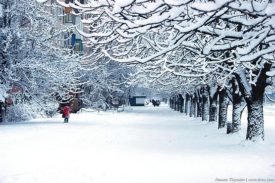 Улица Комарова в снегу