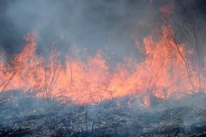 Фотография дыма у огня