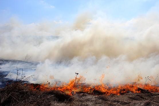 Огонь оставляет после себя пепел и клубы дыма в балке