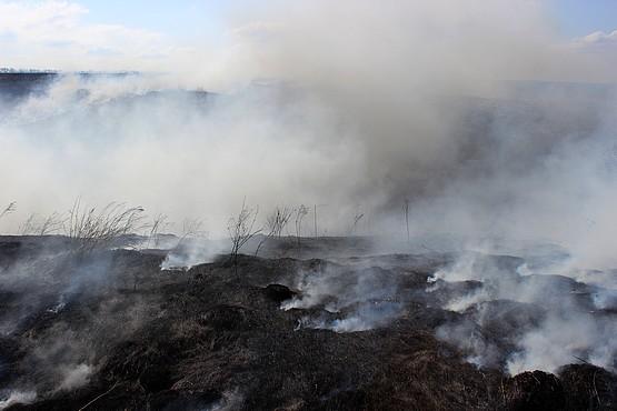 Выгоревший участок балки
