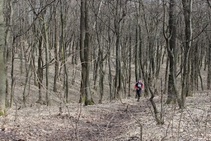 Pervomaiskiy trail running