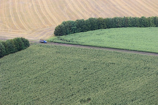 Грузовик в поле у посадки