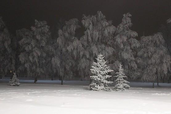 Всё в снегу и инее