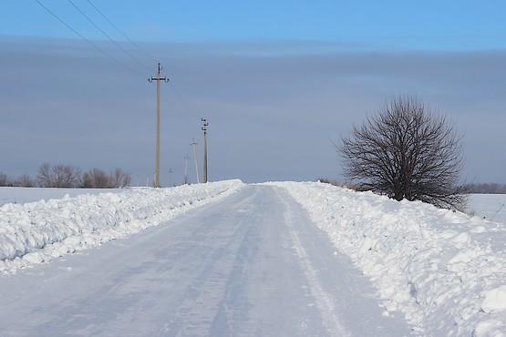 Дерево у дороги, покрытой льдом