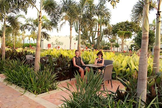 Таня с Алексеем в ресторане утопающем в зелени
