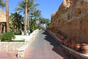Дорога для пробежек у Красного моря