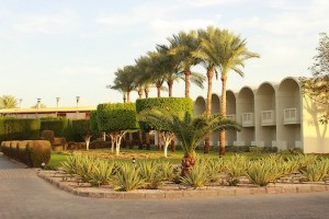 Территория отеля Reef Oasis Beach Resort 5*
