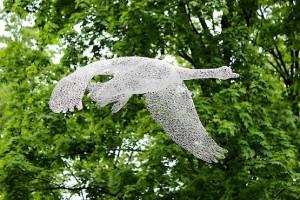 Лебедь в полёте у пруда парка Горького