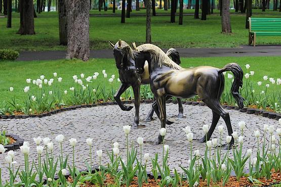 Лошади в тюльпанах