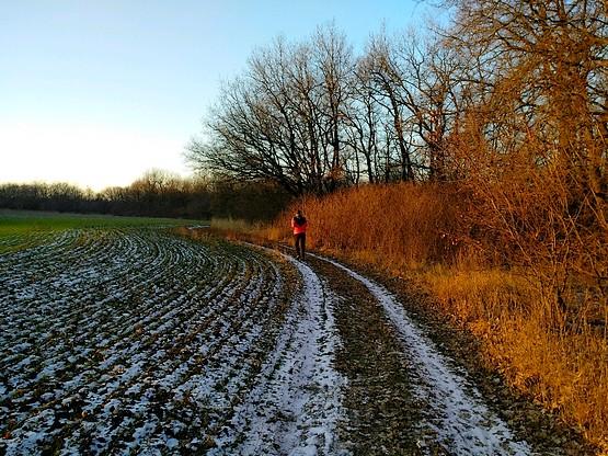 Бег по дороге у леса