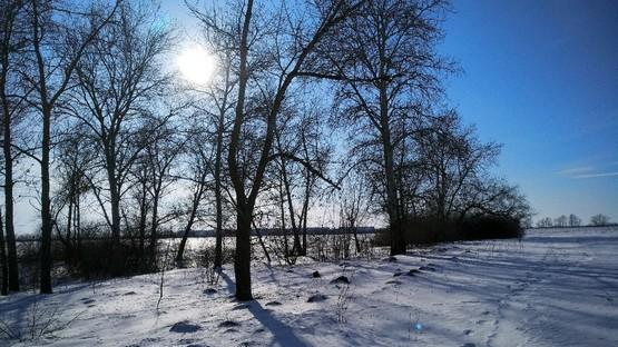 Зимний пейзаж с пробежки за городом