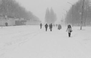 По очищенной от снега дороге