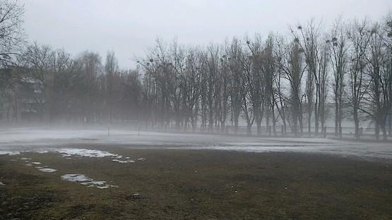 Ворота в тумане