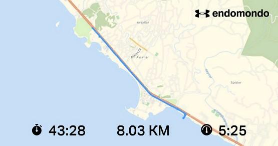 Скин программы с пробежки на 8 км