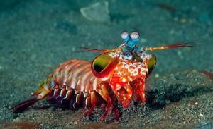 На глубине 50-ти метров