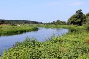 Северский Донец летом