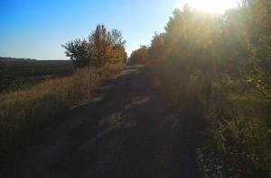 Бег под лучами солнца