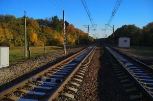 Дважды перебегал железнодорожный путь