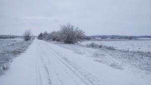 Классический маршрут зимних пробежек