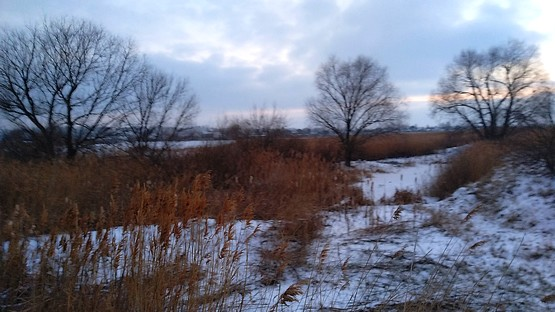 Пейзаж с пробежки у села