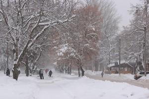 Город Первомайский украшен снегом в январе 2019-го