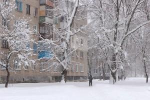 Прогулка по городу между деревьев в снегу