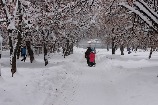 Сказочная погода для прогулки в январе