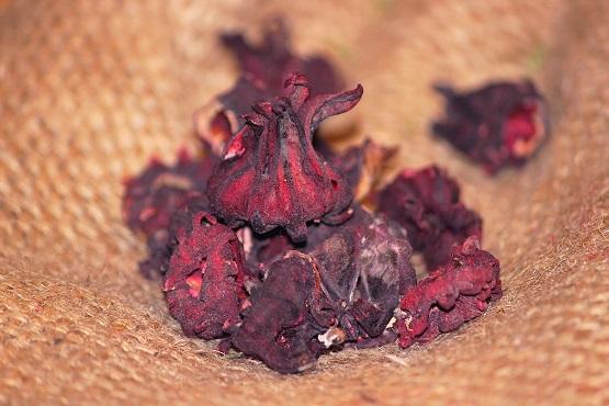 Каркаде (Суданская роза)