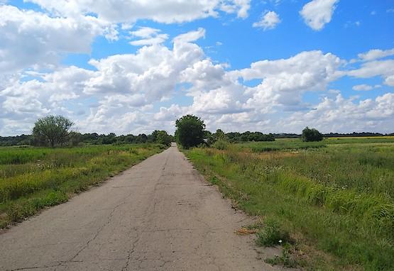 По дороге в поле