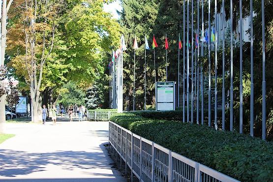 Флаги у центрального входа