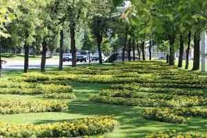 Зелёная рука Харькова