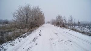 Полумарафон по ноябрьскому снегу