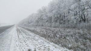 Полумарафон в зимней сказке ноября