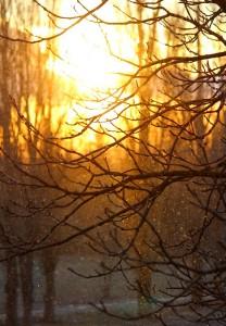 Снег играет в лучах солнца
