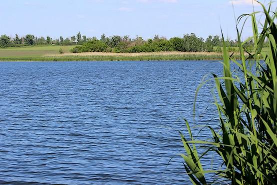 Берекское водохранилище летом 2020 года