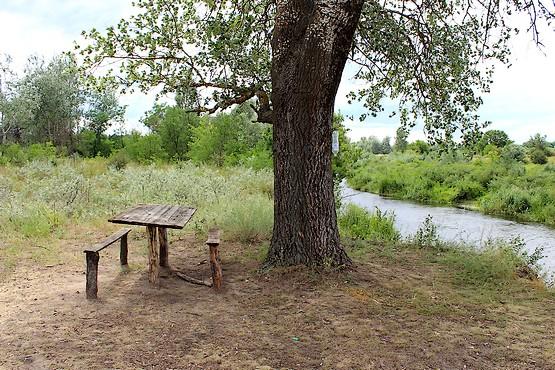 Деревянный столик с лавочками у реки