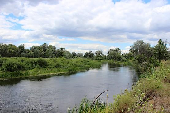 Фотография реки Северский Донец